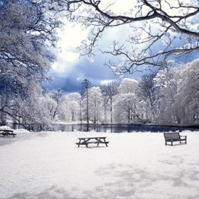 Ngắm tuyết rơi - Bucket List Ideas