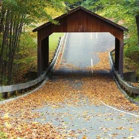 Drive on Pierce Stocking Scenic Drive, Michigan - Bucket List Ideas