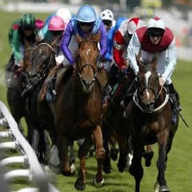 Bet on the winning horse at the races - Bucket List Ideas