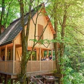 Stay overnight in a luxury treehouse - Bucket List Ideas