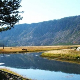 Camp In Yellowstone - Bucket List Ideas