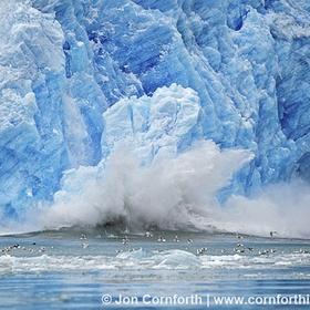 Visit Alaska on a cruise ship and witness glacier flowing / calving - Bucket List Ideas