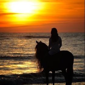 Learn to Ride a Horse - Bucket List Ideas