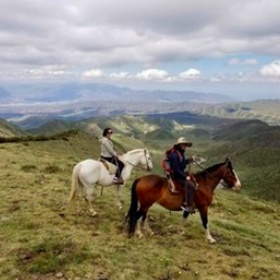 Start horseback riding again - Bucket List Ideas
