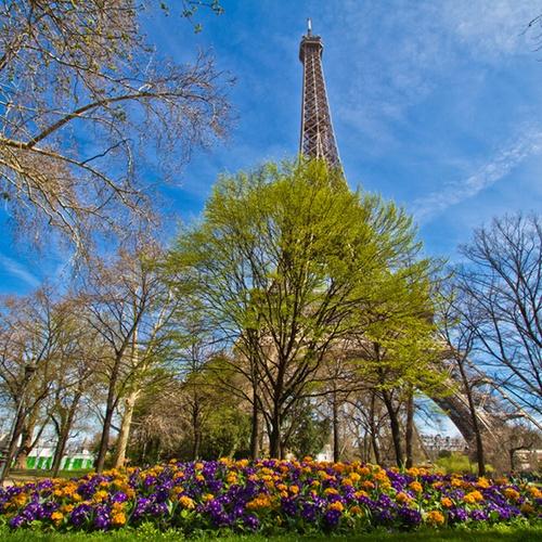 Visit the Eiffel Tower - Bucket List Ideas