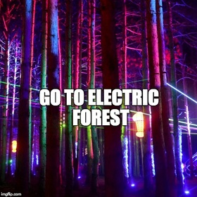 Go to Electric Forest - Bucket List Ideas