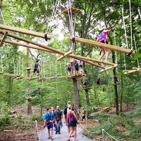 Complete an aerial obstacle courses - Bucket List Ideas