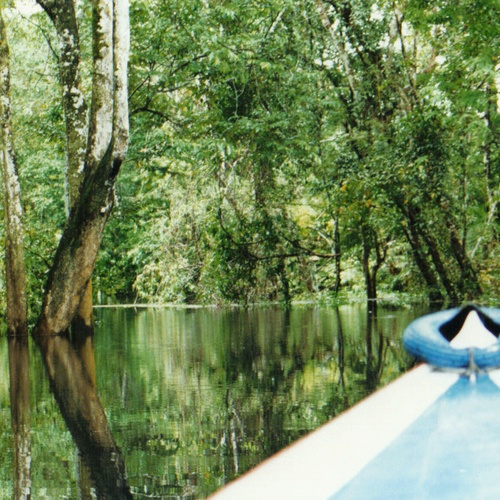 Boat on the Amazon River - Bucket List Ideas