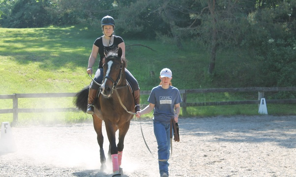 Learn to ride and care for horses - Bucket List Ideas