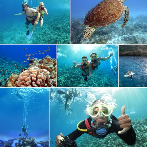 ⚜️Go Snuba diving - Bucket List Ideas