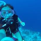 Lauren Southard's avatar image