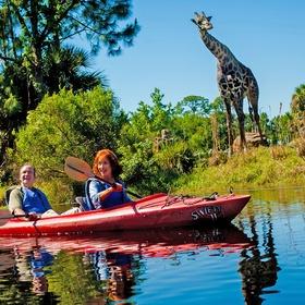 Kayak through the  Brevard Zoo in Melbourne Florida - Bucket List Ideas