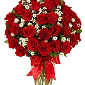 Give Mom a Dozen Red Roses - Bucket List Ideas