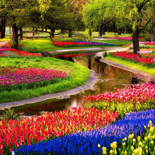 "Experience the Colorful ""Keukenhof"" Gardens - Bucket List Ideas"