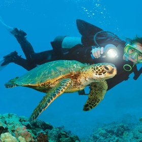 Scuba Diving at the Great Barrier Reef - Bucket List Ideas