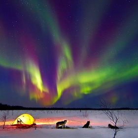 See the Northern Lights in Alaska - Bucket List Ideas