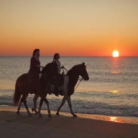 Enjoy a Horseback Riding on the Beach - Bucket List Ideas