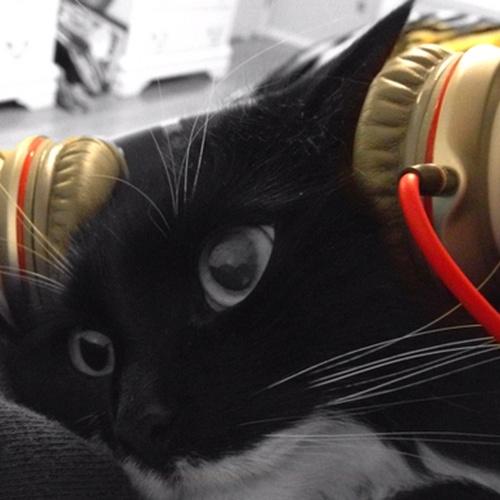 Buying a Beats headphones - Bucket List Ideas