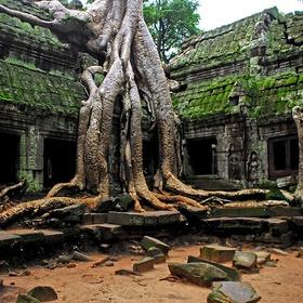 Cambodia - Angkor Wat - Temple in Siem Reap - Bucket List Ideas