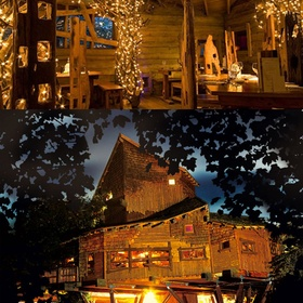 🍴 Eat at The Treehouse Restaurant at the Alnwick Garden, UK - Bucket List Ideas