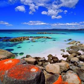 Visit tasmanian wilderness - Bucket List Ideas