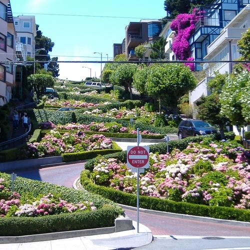 Drive down Lombard Street in San Francisco - Bucket List Ideas