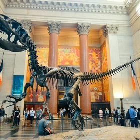 Visit the American Museum of Natural History - Bucket List Ideas