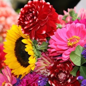 Buy fresh flowers for my home every 2 weeks for an entire year - Bucket List Ideas