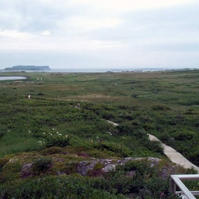 Visit L'Anse aux Meadows National Historic Site - Bucket List Ideas