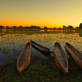 Canoe on the Okavango delta in Botswana - Bucket List Ideas