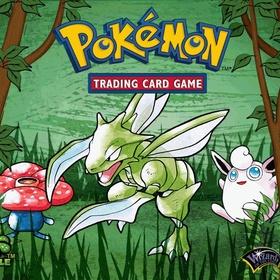 Own Every Pokémon Card - Bucket List Ideas