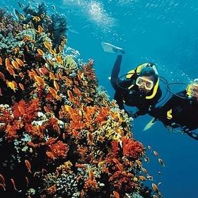 Level 1 - Scuba diving - Bucket List Ideas