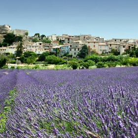 Visit Grassé, France - Bucket List Ideas