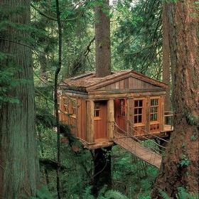 Spend a Night in a Tree House - Bucket List Ideas
