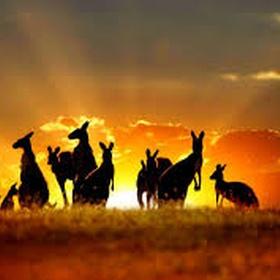Visit australia and new zealand - Bucket List Ideas