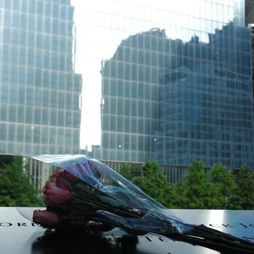 Visit the 9-11 Memorial (Ground Zero) - Bucket List Ideas