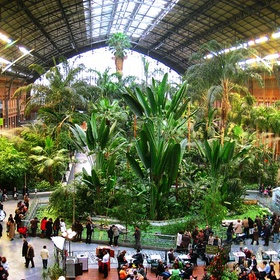 Go to the Atocha train station in Madrid, Spain - Bucket List Ideas