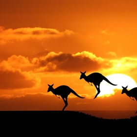 Visit Australia - Bucket List Ideas