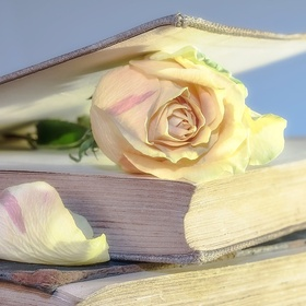 Read a self help book - Bucket List Ideas