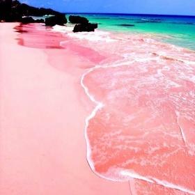 Go on a PINK SAND BEACH - Bucket List Ideas