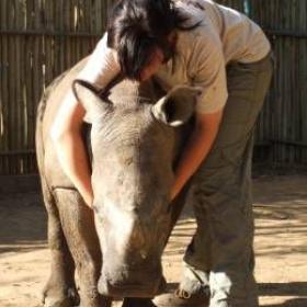 Volunteer at a Wildlife Centre - Bucket List Ideas