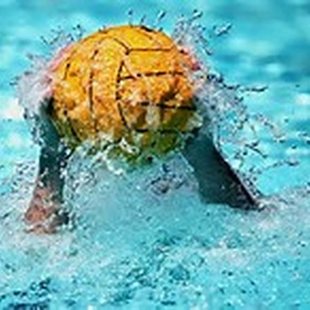 Learn how to play water polo, and polo - Bucket List Ideas