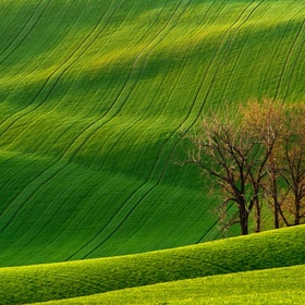 See Rolling Hills of Moravia - Bucket List Ideas