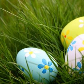 Go on an Easter egg hunt for eggs - Bucket List Ideas