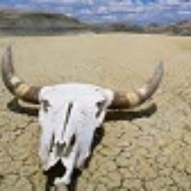 Visit Death Valley National Park - Bucket List Ideas