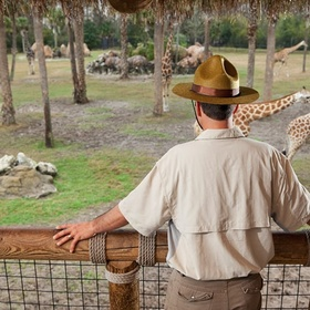 Be A Zoo Keeper For A Day - Bucket List Ideas
