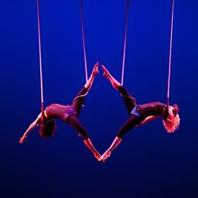 Swing on a Trapeze - Bucket List Ideas