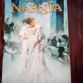 Read the entire chronicles of narnia series - Bucket List Ideas