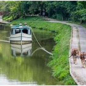 Go on a mule powered canal boat ride - Bucket List Ideas