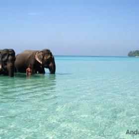 Visit the Andaman Islands - Bucket List Ideas